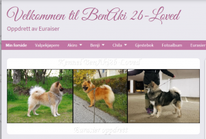Kennel BenAki 2b-Loved